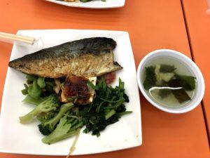 鯖魚便當無飯