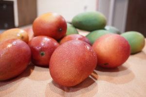 台灣的芒果